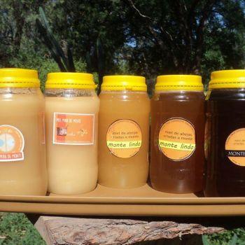 familias-productoras-del-monte-de-traslasierra-miel-1kg-500gr